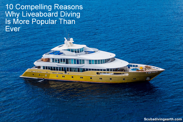 10 Compelling Reasons Why Liveaboard Diving holidays are Popular