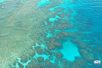 2 day liveaboard Great Barrier Reef (2 day 1 night Outer Barrier Reef)