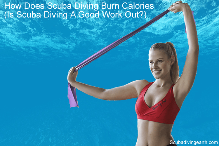 How Does Scuba Diving Burn Calories Is Scuba Diving A Good Work Out