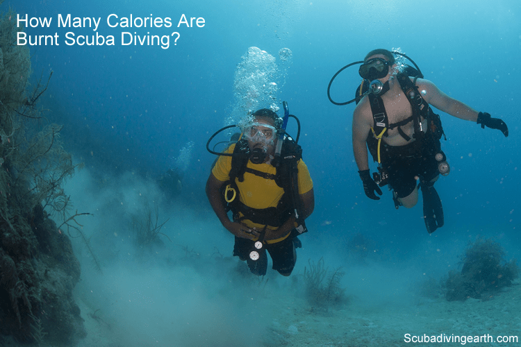 How many calories are burnt scuba diving?