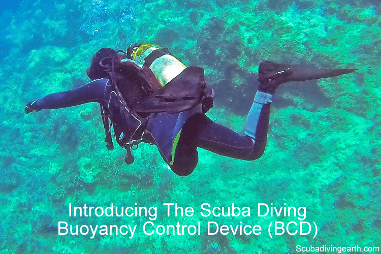 Introducing the scuba diving buoyancy control device (BCD)