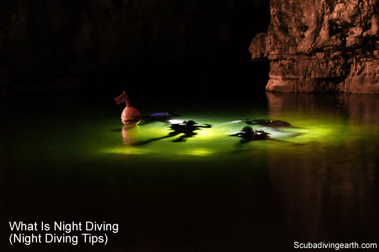 What Is Night Diving (21 Night Diving Tips)