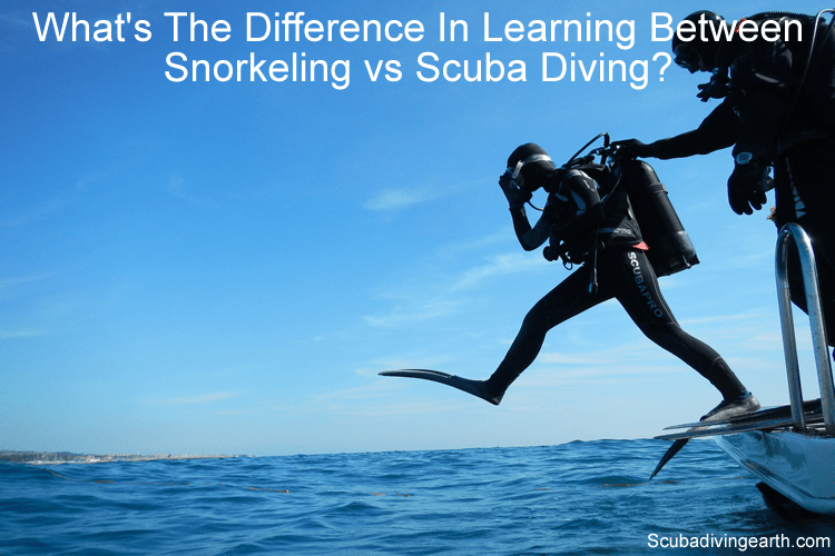 What's the difference in learning between snorkeling vs scuba diving