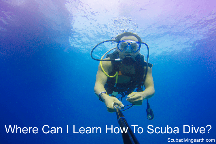 Where can I learn how to scuba dive