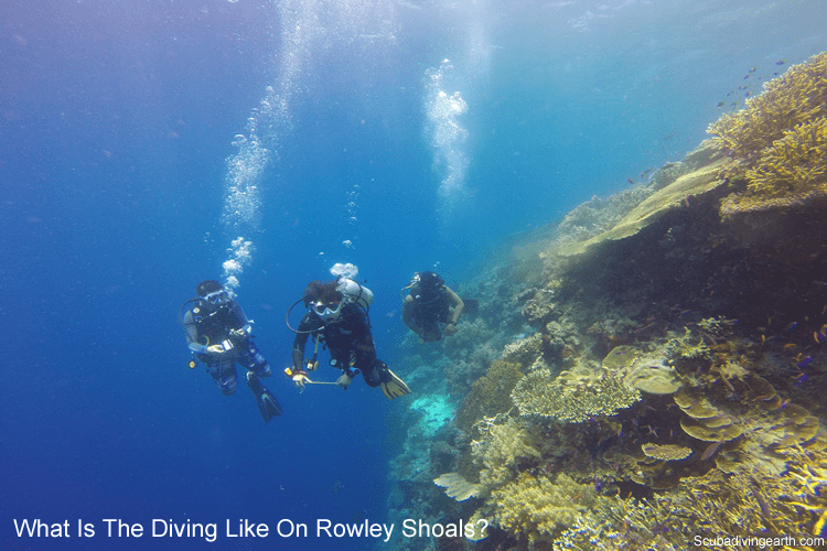 What is the diving like on the Rowley Shoals