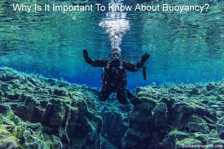 How Does A Buoyancy Control Device Work and why is it important to know about buoyancy
