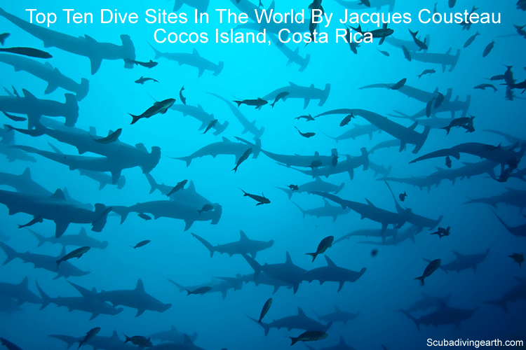 Top ten dive sites in the world by Jacques Cousteau - Cocos Island Costa Rica