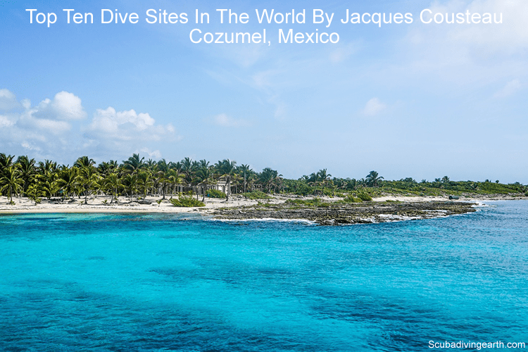 Top ten dive sites in the world by Jacques Cousteau - Cozumel Mexico