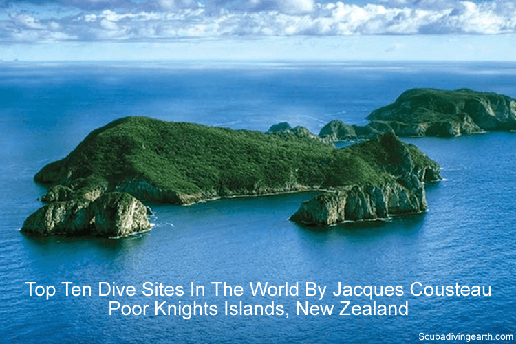 Top ten dive sites in the world by Jacques Cousteau - Poor Knights Islands New Zealand