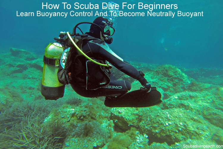 How to scuba dive for beginners - Learn buoyancy control and to become neutrally buoyant