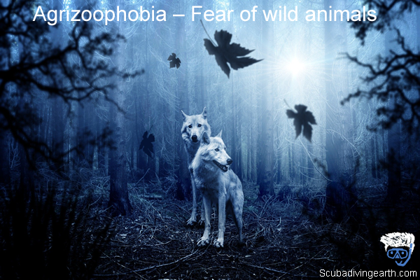 Agrizoophobia – Fear of wild animals