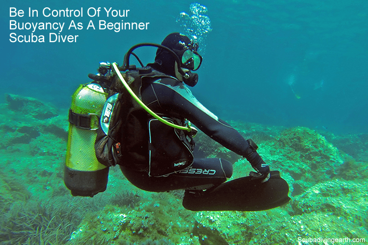 Be in control of your buoyancy as a beginner scuba diver