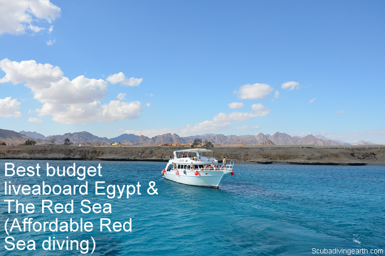 Best budget liveaboard Egypt & The Red Sea - Affordable Red Sea diving large