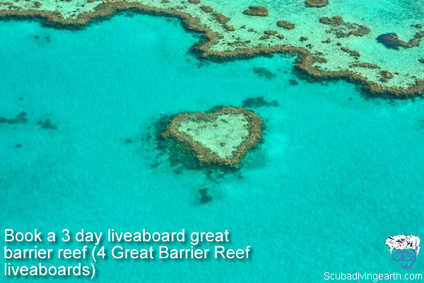 Book a 3 day liveaboard great barrier reef - 4 Great Barrier Reef liveaboards