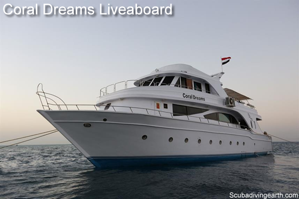 Book a 4 day liveaboard Red Sea Egypt - Coral Dreams Liveaboard