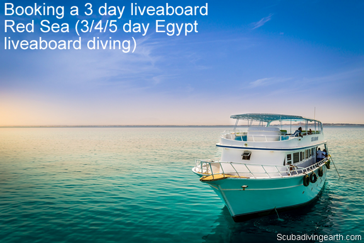 Booking a 3 day liveaboard Red Sea 3 - 4 - 5 day Egypt liveaboard diving