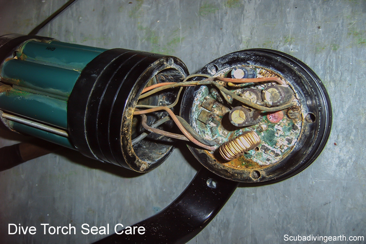Night dive torch seal care