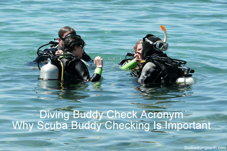 Diving Buddy Check Acronym - Why Scuba Buddy Checking Is Important