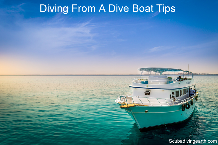 Diving from a dive boat tips for beginners large