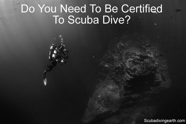 Do you need to be certified to scuba dive