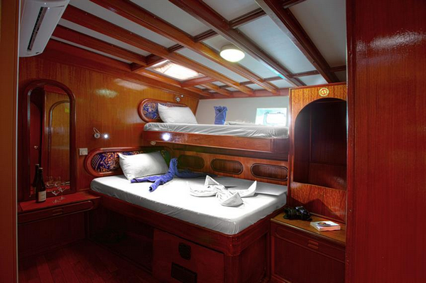 Features of Maldives Nautilus One liveaboard cabin review