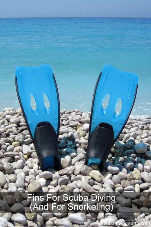 Fins for scuba diving and for snorkeling