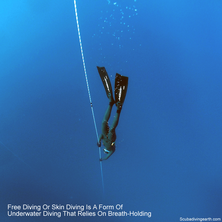 Freediving or skin diving is a form of underwater diving that relies on breath-holding