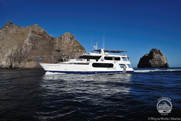 Galapagos Aggressor III Liveaboard - best luxury dive liveaboard Galapagos