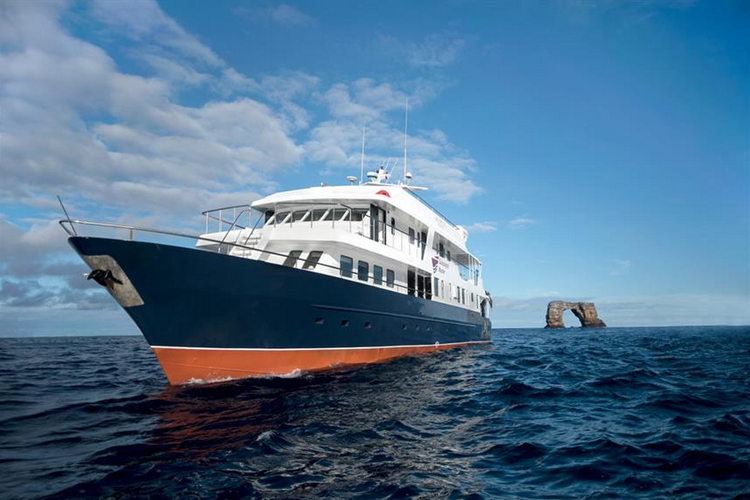Galapagos diving liveaboard is the only way to scuba dive Darwin and Wolf Island - sharkiest place on earth - Galapagos Master Liveaboard