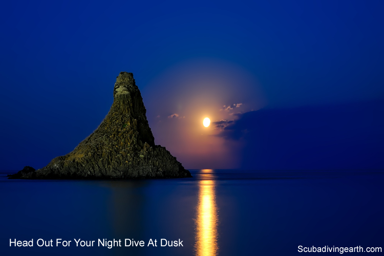 Head out for your night dive at dusk