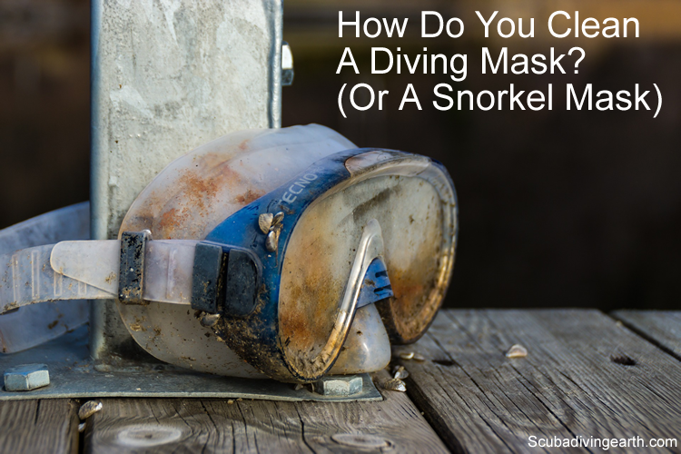 How do you clean a diving mask or a snorkel mask