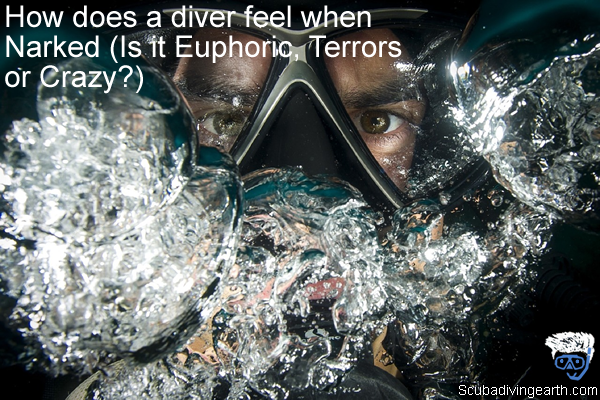 How does a diver feel when Narked - Is it Euphoric or Terrors or Crazy