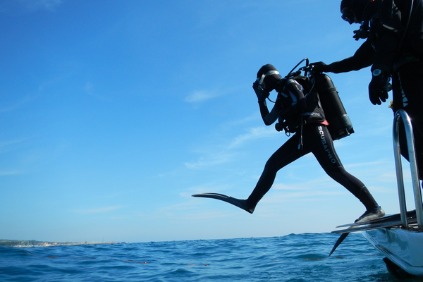 How much wind is too much for diving is decided by how difficult the resulting sea state affects getting in and exiting the water