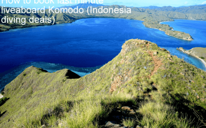 How to book last minute liveaboard Komodo - Indonesia diving deals