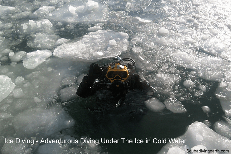 Ice Diving - Adventurous Diving Under The Ice in Cold Water