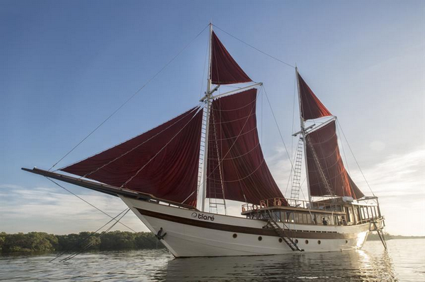 Indonesia Tiare Cruise liveaboard review