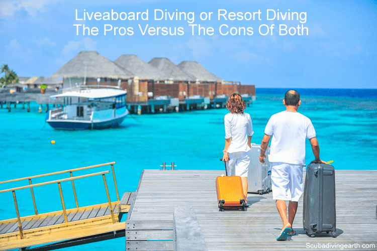 Liveaboard Diving or Resort Diving (The Pros Versus The Cons Of Both)
