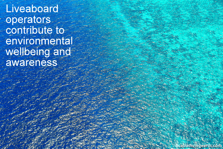 Liveaboard holiday operators contribute to environmental wellbeing and awareness