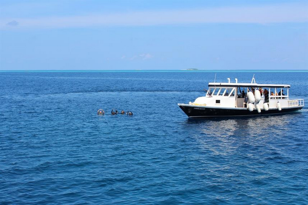 Maldives Honors Legacy scuba diving review
