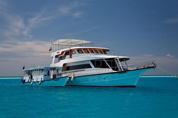 Maldives Sheena liveaboard for beginner divers