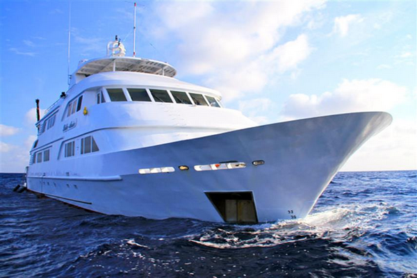 Nautilus Belle Amie, Mexico - adventures to Guadalupe and the Socorro Islands
