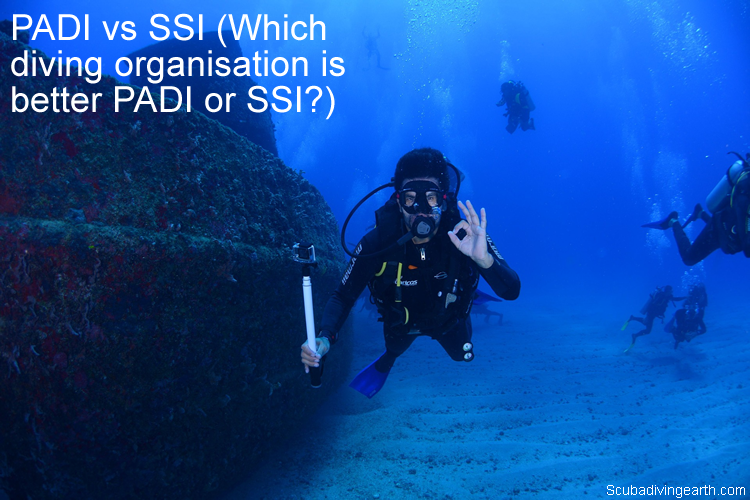PADI vs SSI - Which diving organisation is better PADI or SSI
