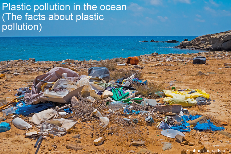 Plastic pollution in the ocean - The facts about plastic pollution large