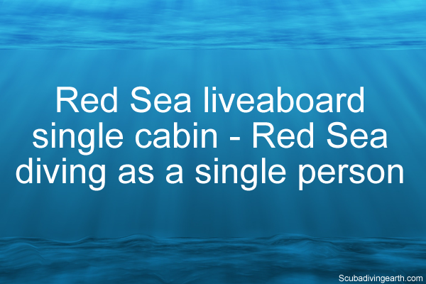 Red Sea liveaboard single cabin - Red Sea diving as a single person diving alone in Egypt