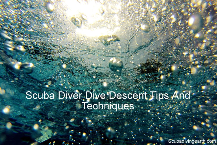 Scuba diver dive descent tips and techniques for beginners large