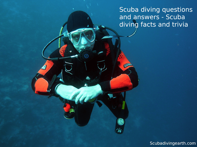 Scuba diving questions and answers - Scuba diving facts and trivia