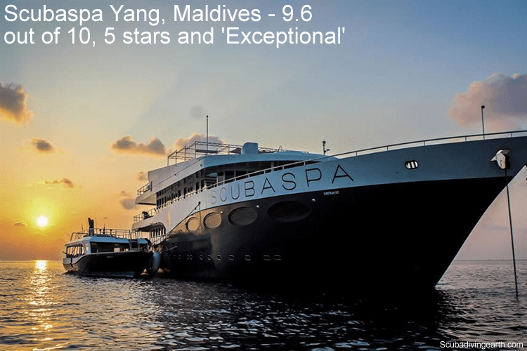 Scubaspa Yang, Maldives - 9.6 out of 10, 5 stars and Exceptional - short Maldives liveaboard trips for 5 days all inclusive