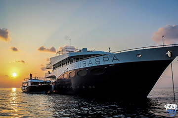 Scubaspa Yang liveaboard diving (Exceptional Maldives liveaboard)