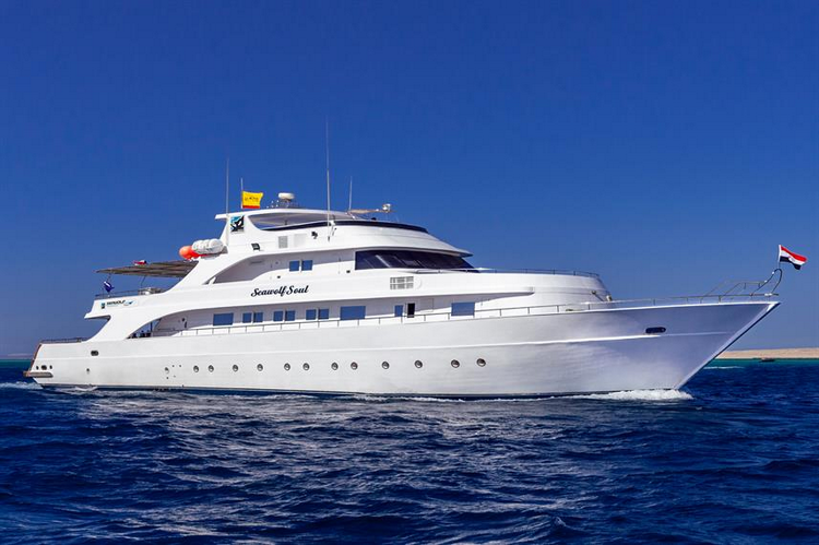 Seawolf Soul Liveaboard Review
