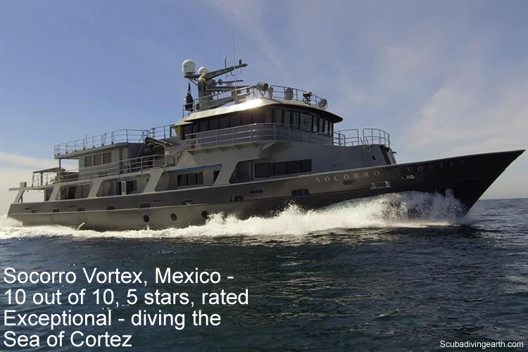 Socorro Vortex, Mexico - 10 out of 10, 5 stars, rated Exceptional - diving the Sea of Cortez
